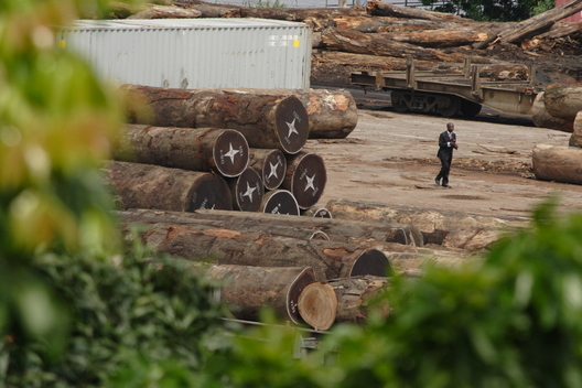Logs to be Exported in Congo