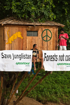 Tree Occupation in India