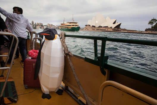 March of the Penguins in Sydney