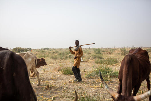Farmer in the Far North Region of Cameroon