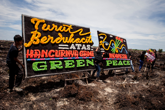 Mourning Action in Indonesia's Dead Peatland