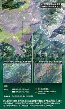 Infographic of China's Last Remaining Green Peafowl Habitat (wechat CHN version)
