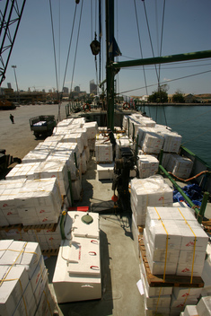 Unloading of Third Shipment - Greenpeace delivers supplies for MSF - 2006