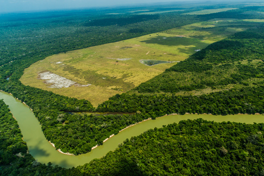 Aerial of Alto Turiacu Indigenous Land in Brazil