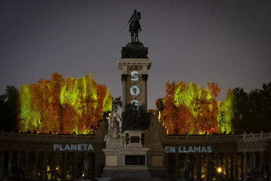 Amazon Day Projection Action of Burning Trees in Retiro Park Madrid