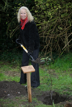 Tree Planting at Proposed Heathrow Runway