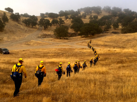 Firefighters at the Soberanes Fire in California