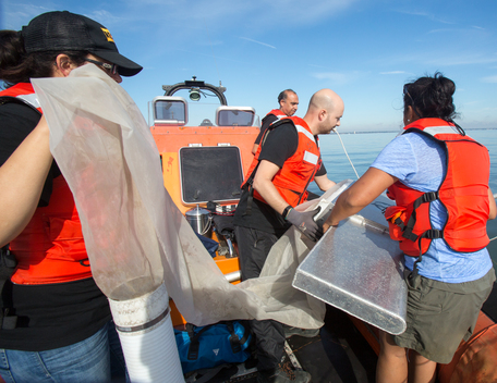 Trawling for Microplastics in the Elizabeth River in Norfolk, Virginia