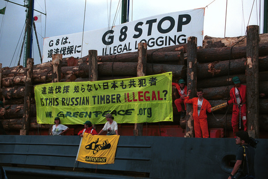 Action against Illegal Timber on MV Byisk in Japan