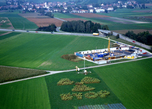 Nuclear Protest in Sunflower Field in Benken
