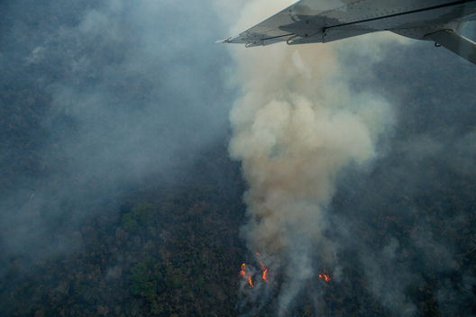 Forest Fires in the Indigenous Land Arariboia in Brazil