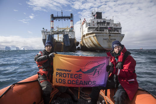 Protect The Oceans Banner in Antarctica