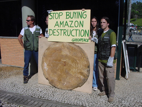 Forests Action Mahogany Vigil in Brazil