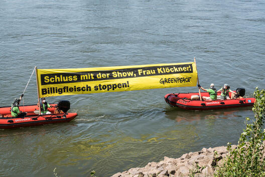 Protest in Dusseldorf Against Industrial Meat Production