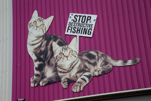 Activists Shut Down Whiskas' Factory in New Zealand (Photos & Videos)