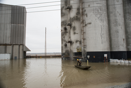Mississippi River Flooding in Illinois