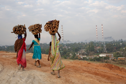 Residents of Bhadrapara Village carrying Firewood in Chhattisgarh