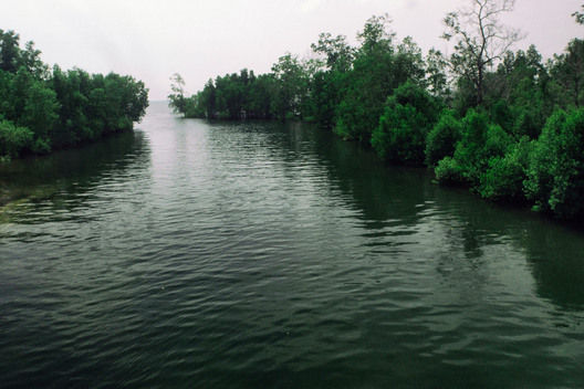Mangrove River in Santan Ilir Village in East Kalimantan