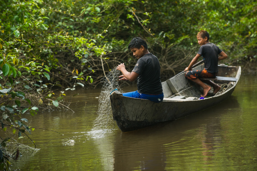 Munduruku Children Fishing in the Amazon Rainforest