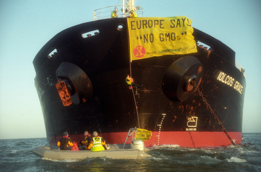 Greenpeace volunteers stop carrier IOLCOS GRACE preventing entry of genetically modified soya into Anglesey, UK