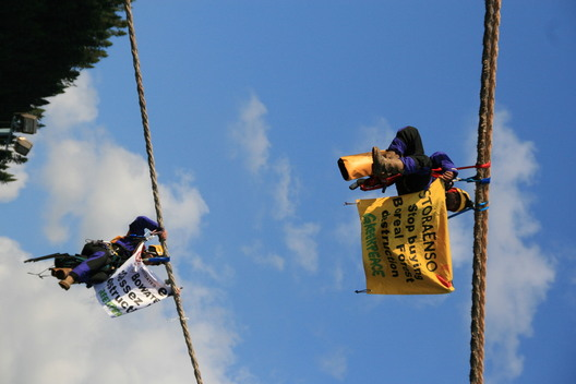 Banners Against Boreal Logging
