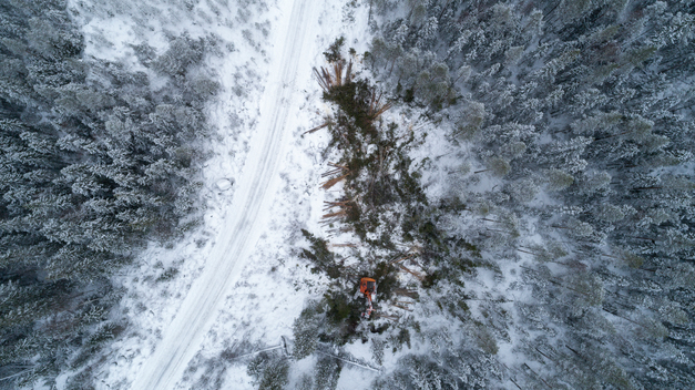 Aerial View over Logging in Jämtland