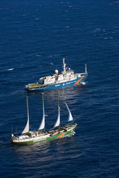 Rainbow Warrior and Esperanza