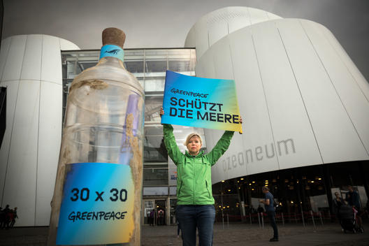 Protest for High Seas Protection at Ozeaneum in Stralsund, Germany