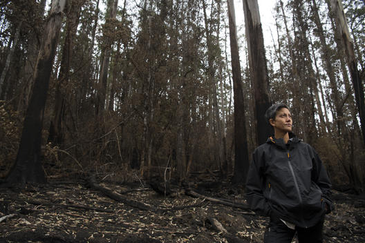 Bushfire Survivor in Tasmania