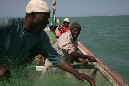 Fishermen in Senegal
