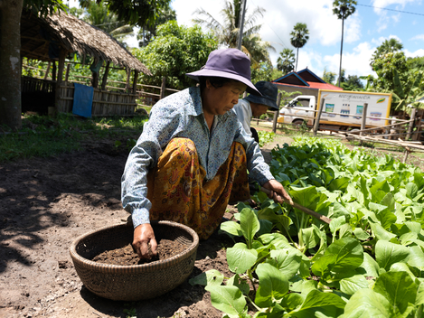 Ecological Farmer in Cambodia
