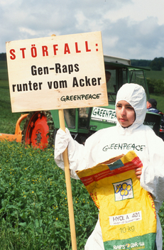 GE Oil Seed Rape Action in Germany