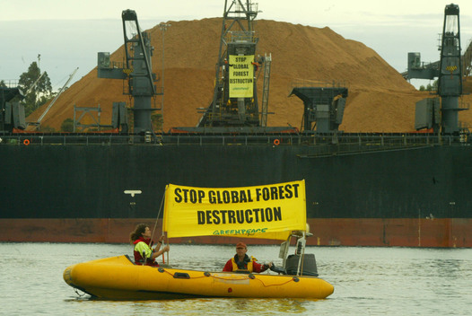 Forests Action at Triabunna Port in Australia