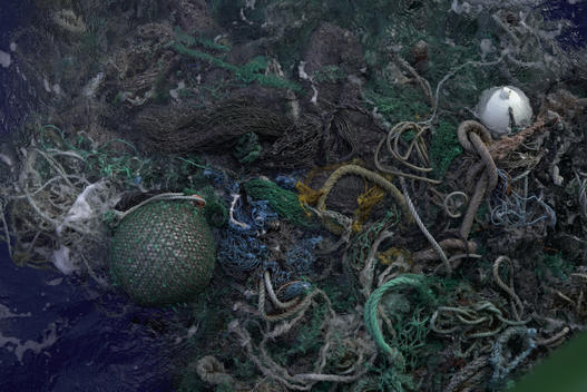 Ghost Fishing Net in the Great Pacific Garbage Patch