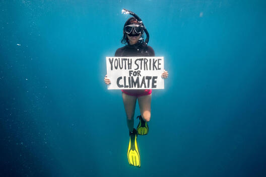 Climate Strike on the Saya de Malha Bank in the Indian Ocean