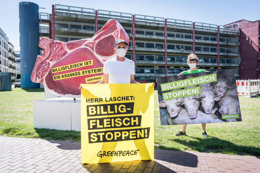 Protest in Dusseldorf for Restructuring of Industrial Meat Production