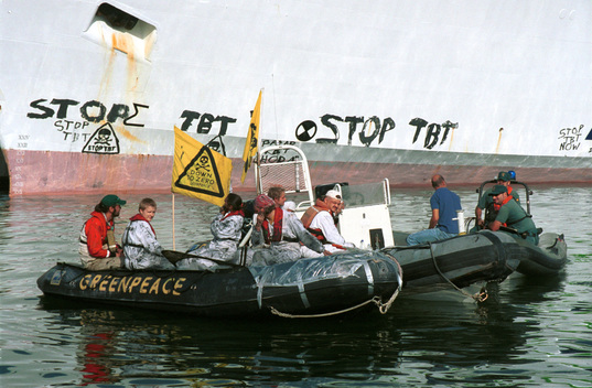 "Action against Use of TBT Containing Ship Paint by Ship ""Transmediterranea"" in Spain"