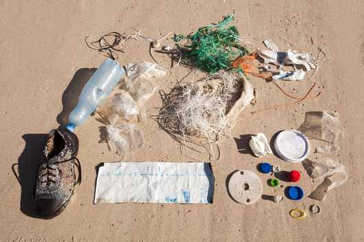 Plastic Waste Greenpeace Monitoring in the Curonian Spit in Russia