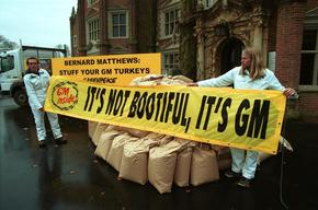 Greenpeace delivers non GE turkey feed at Bernard Matthews. This food company claims it can't find GE free feed. London, UK