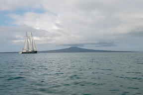 Rainbow Warrior Arrives in Auckland