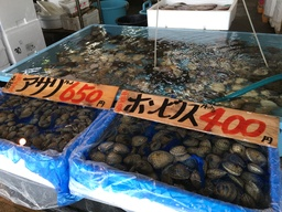 Fishmarket in Onahama near Fukushima