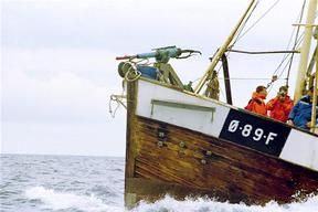 "Norwegian Whaler ""Villduen"" in the North Sea"