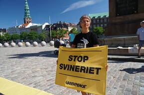 Activists Protest Government Rejection on County Level Veto on New Pig Farms in Denmark