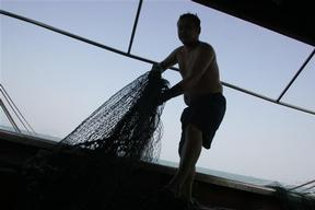 Documentation on Overfishing in Hong Kong