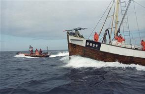 Greenpeace action against Norwegian whaler Villduen, North Sea, Norway