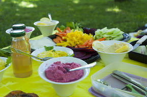 World Meat Free Week Vegan Picnic in Lugano