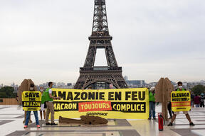 Amazon Fires - Day of Action in Paris
