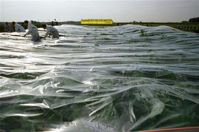 Activists wrap GMO Testing Field with Plastic