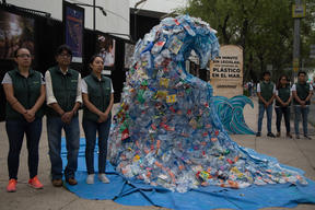 Plastic Wave Action at Senate in Mexico City