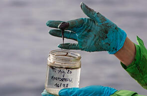 Oil Pollution at Andrew Oilfield in the North Sea